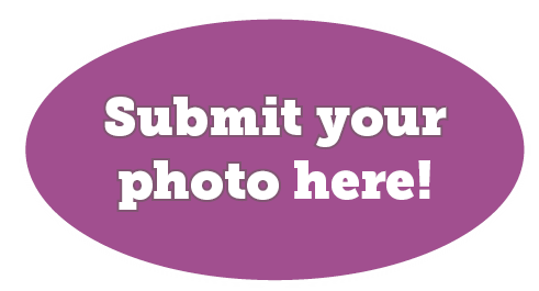 Submit your photo here https://form.jotform.com/83187266395974