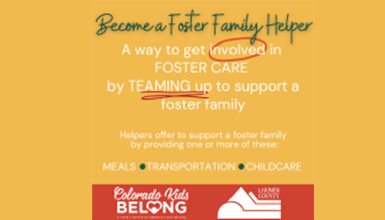 larimer county foster care helper